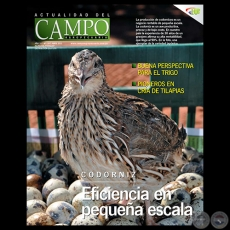 CAMPO AGROPECUARIO - AÑO 10 - NÚMERO 118 - ABRIL 2011 - REVISTA DIGITAL