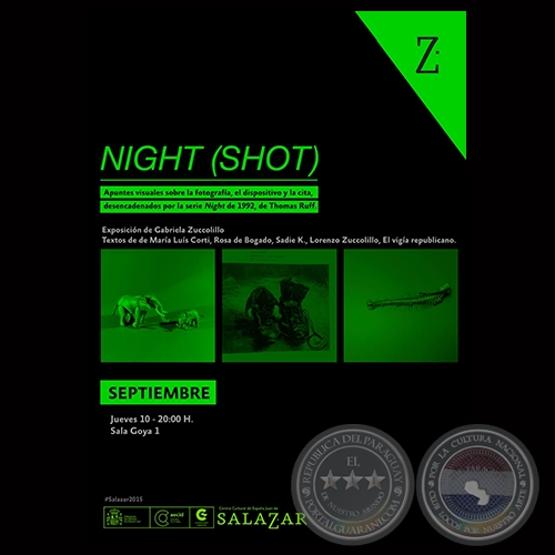 NIGHT (SHOT), 2015 - Exposición de GABRIELA ZUCCOLILLO