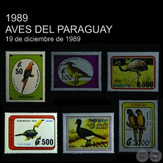 AVES DEL PARAGUAY
