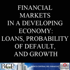 FINANCIAL MARKETS IN A DEVELOPING ECONOMY: LOANS, PROBABILITY OF DEFAULT, AND GROWTH by JOSÉ ANÍBAL INSFRÁN